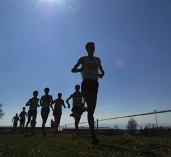 Championnats de France de cross-country et Hivernaux de lancers longs